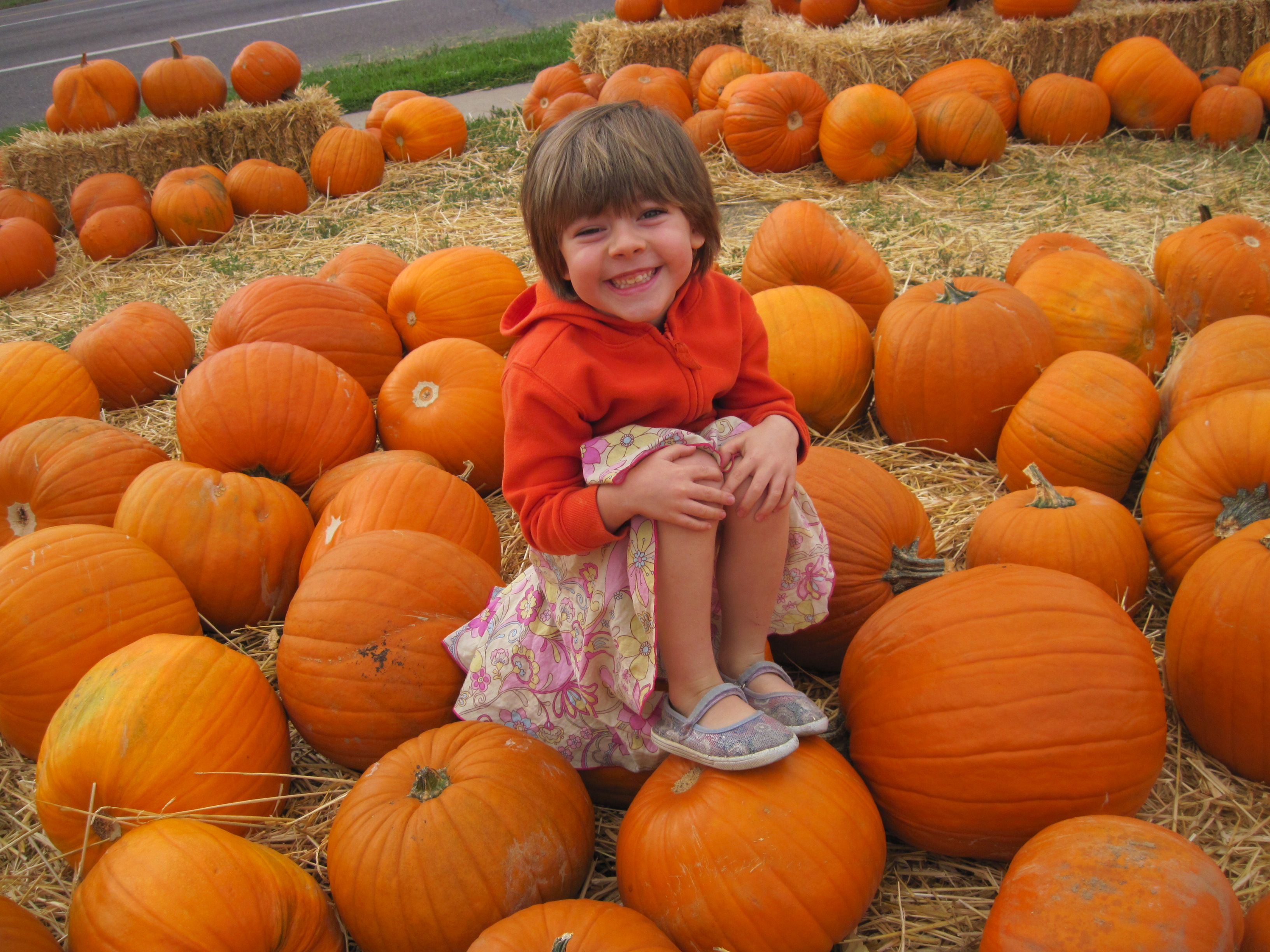 pumpkin patch 4.JPG