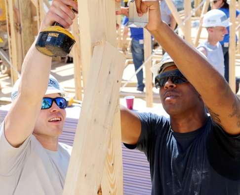 May 5th 2016 Habitat build-060_fig.JPG
