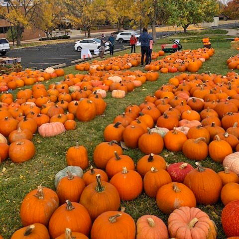 Visit one or both of our pumpkin patches this October!
